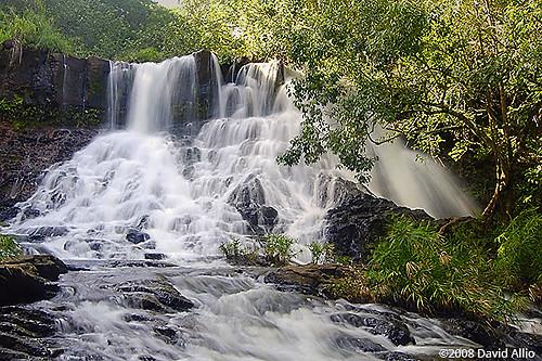 Lower Hoopii Falls Kapaa Stream Kauai Hawaii Ho'opi'i Falls Kapa'a Stream Kaua'i Hawai'i