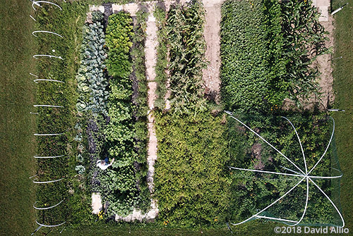 aerial photography Harvest Time in Southwest Virginia Wise County Virginia