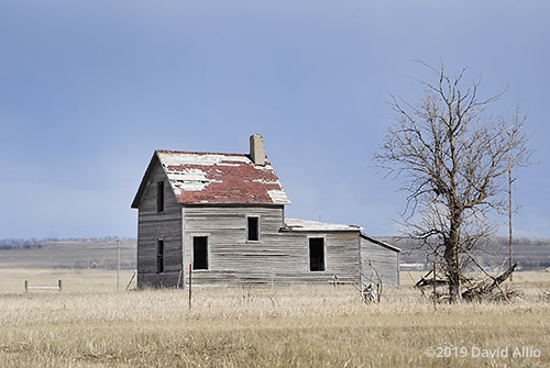 Resistance abandoned prairie house northern Great Plains Williams County Tioga North Dakota Americana Collection