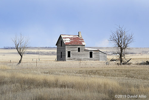 Climate Change snow absent abandoned prairie house northern Great Plains Williams County Tioga North Dakota Americana Collection